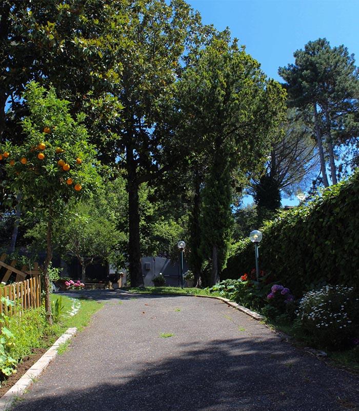 residenza_anziani-villa_gaia_grottaferrata_chi_siamo